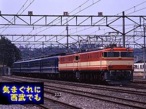 E851yoko4
