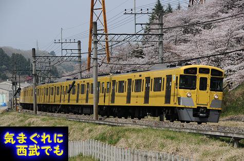 N2000_2